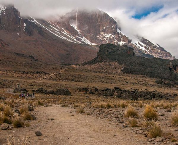 29483568 - group heading up to lava tower on the machame route of kilimanjaro