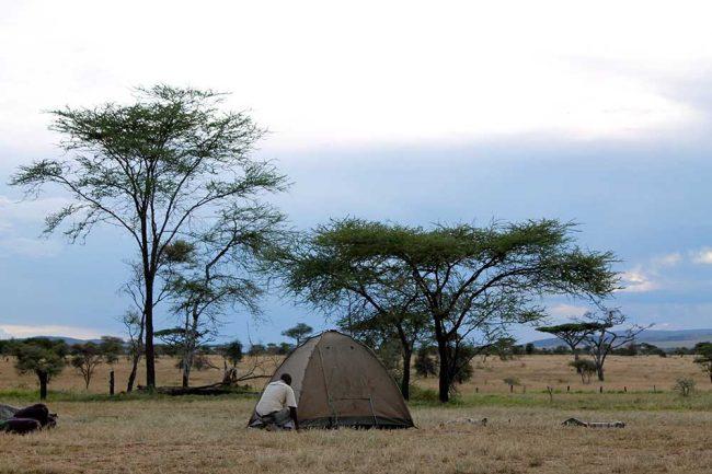 camping-1-2